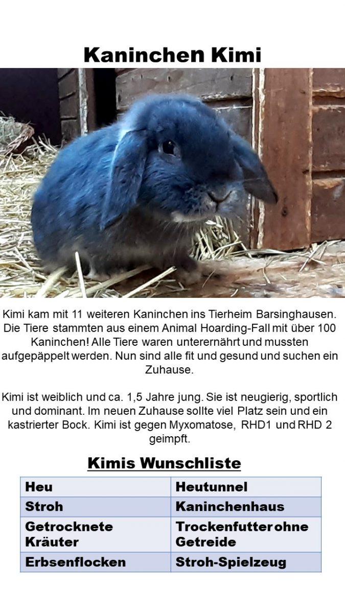 Tier des Monats Tierheim Barsinghausen Fressnapf